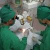 Ảnh 1 của Bệnh viện Đa khoa Hòe Nhai - Cơ sở 1