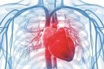 Xạ hình tưới máu cơ tim được dùng khi nào?