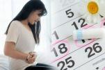 Chu kỳ kinh nguyệt của phụ nữ ảnh hưởng đến chức năng của hệ tim mạch