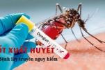 Bệnh sốt xuất huyết nguy hiểm như thế nào?