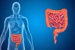 Cách phòng 6 bệnh tiêu hóa thường gặp nhất hiện nay