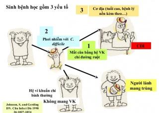 Ảnh 2 của Nhiễm vi khuẩn Clostridium difficile (C. Diff)