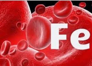Ảnh 4 của Thiếu máu do thiếu sắt