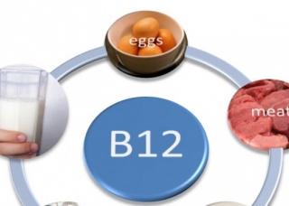 Ảnh 1 của Thiếu Vitamin B12