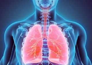Ảnh 3 của Viêm khí quản do vi khuẩn