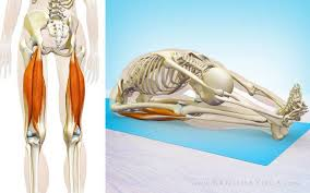 Ảnh 4 của Chấn thương cơ gân kheo
