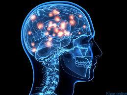 Ảnh 1 của  U nguyên bào thần kinh