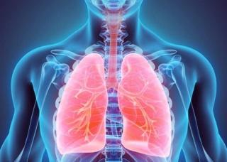 Ảnh 1 của Xơ phổi
