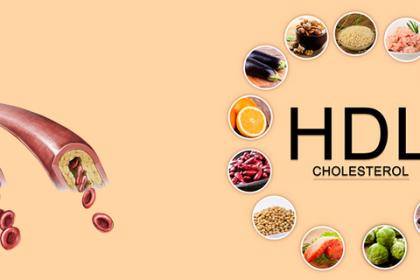 Chỉ số HDL - Cholesterol trong máu cao có ý nghĩa gì?