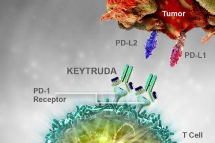 Thuốc miễn dịch Keytruda trong điều trị ung thư dạ dày thực quản