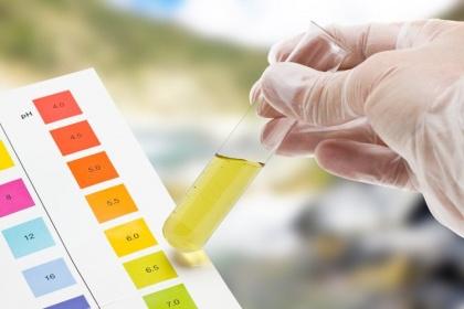 Ý nghĩa chỉ số KET (Ketone) trong xét nghiệm nước tiểu