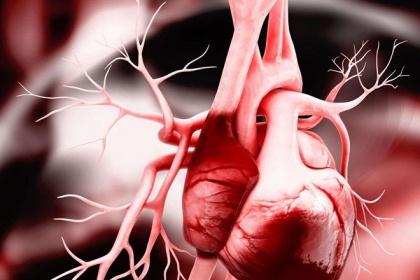 Điều trị suy tim dùng thuốc và không dùng thuốc theo từng giai đoạn bệnh