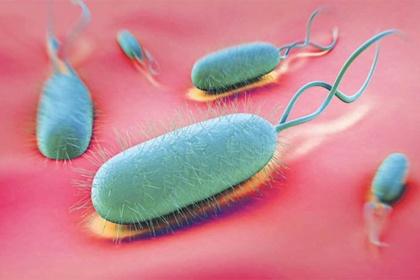 Nhiễm H.pylori và các bệnh lý liên quan với phương pháp chẩn đoán xâm nhập