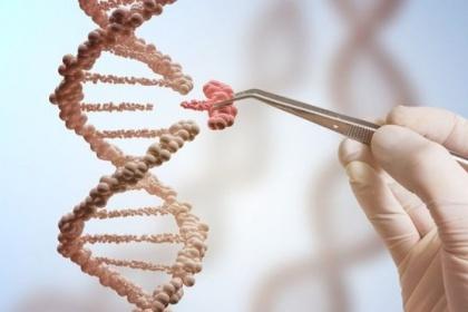 Đột biến gen di truyền BRCA & nguy cơ mắc ung thư vú, buồng trứng