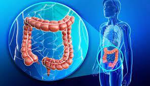 Tầm soát ung thư đại trực tràng không gây mê