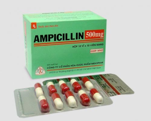Ảnh của Ampicillin