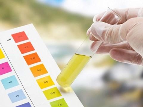 Ý nghĩa của xét nghiệm máu và nước tiểu trong gói khám sức khỏe tổng quát - ảnh 4