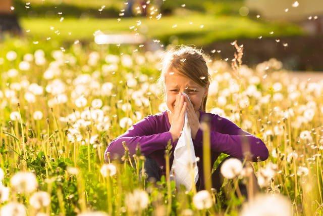 Viêm mũi dị ứng khác gì viêm mũi thông thường? Cách điều trị hiệu quả - ảnh 1