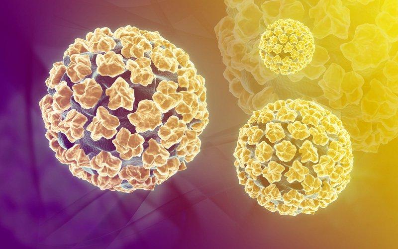 Vắc-xin HPV: Ai nên tiêm và tiêm khi nào? - ảnh 1