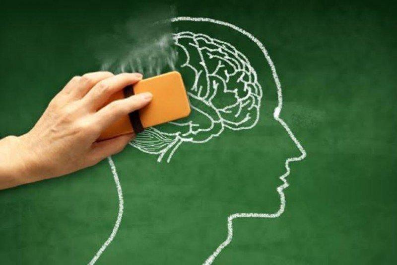 Suy giảm trí nhớ sau điều trị bệnh ung thư và cách khắc phục - ảnh 1