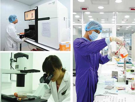 Tế bào gốc là gì và vai trò của tế bào gốc? - ảnh 5