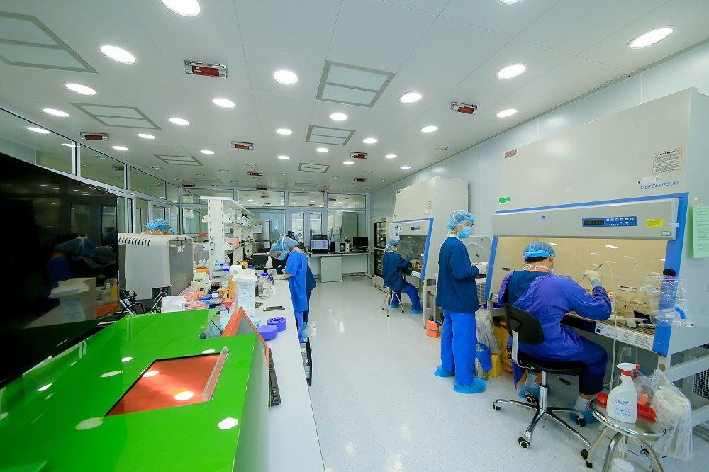 Tế bào gốc là gì và vai trò của tế bào gốc? - ảnh 6
