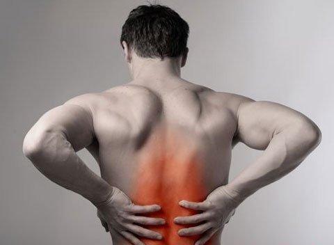 Đốt sống ngực: Đặc điểm, Chức năng và Các bệnh thường gặp - ảnh 2