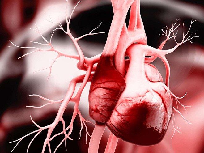 Những nguyên nhân gây suy tim cấp - ảnh 1