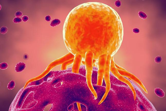 Kiểm soát đau cho bệnh nhân ung thư tại nhà - ảnh 1