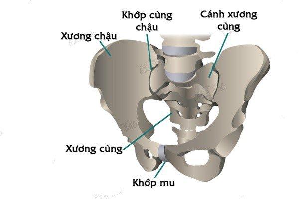 Đau vùng xương chậu mãn tính ở nữ - ảnh 1