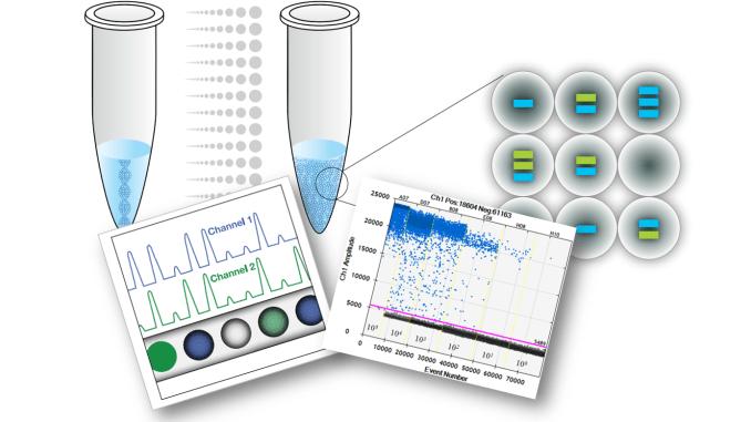 Các xét nghiệm kiểm tra vi khuẩn HP dạ dày - ảnh 2