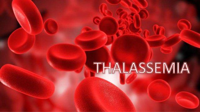 Bệnh vàng da huyết tán miễn dịch sơ sinh - ảnh 2
